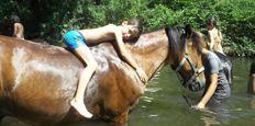 Equitation en Ardèche