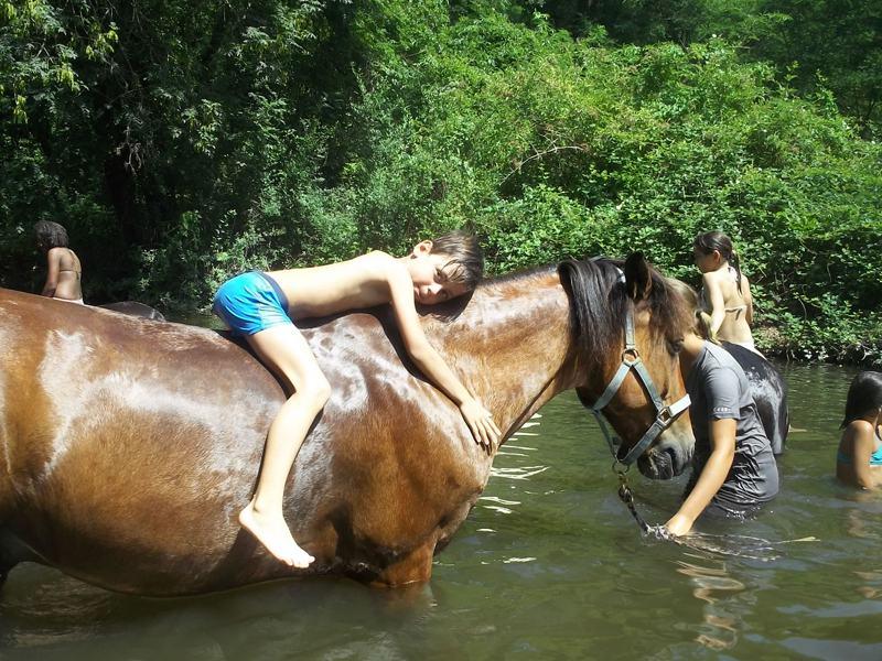 Enfant sur un cheval se baignant à la rivière en colonie de vacances cet été
