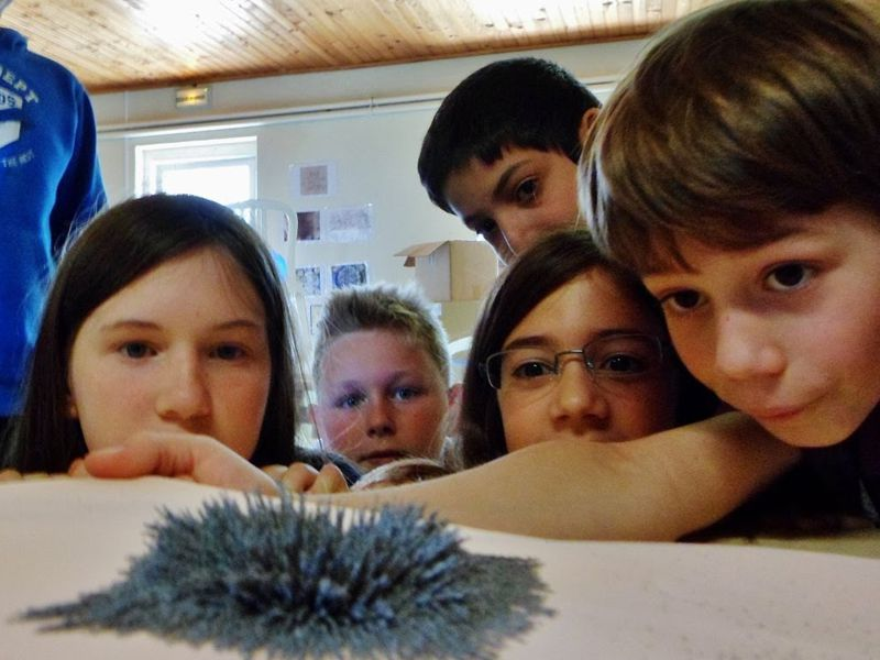 Enfants observant une expérience avec de la poudre magnétique en colonie de vacances d'été