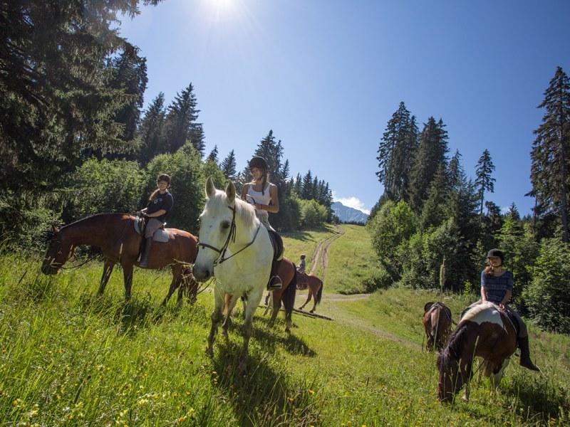 Adolescents à la campagne et leur cheval en colonie de vacances à Bauduen multiactivités pour cet été