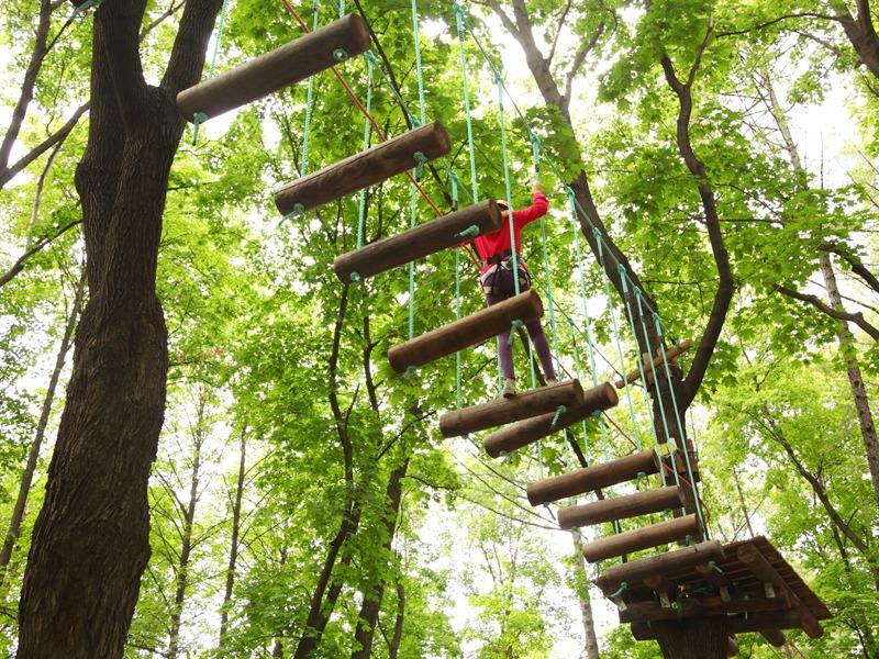 Enfants sur un pont de singe en colonie de vacances accrobranche cet été à Bauduen
