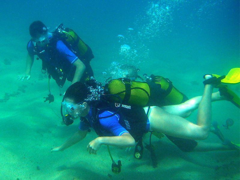 Deux jeunes faisant de la plongée sous marine en colo à l'océan