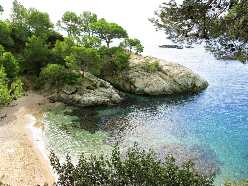 vue sur les plages Corses en colonie de vacances d'été