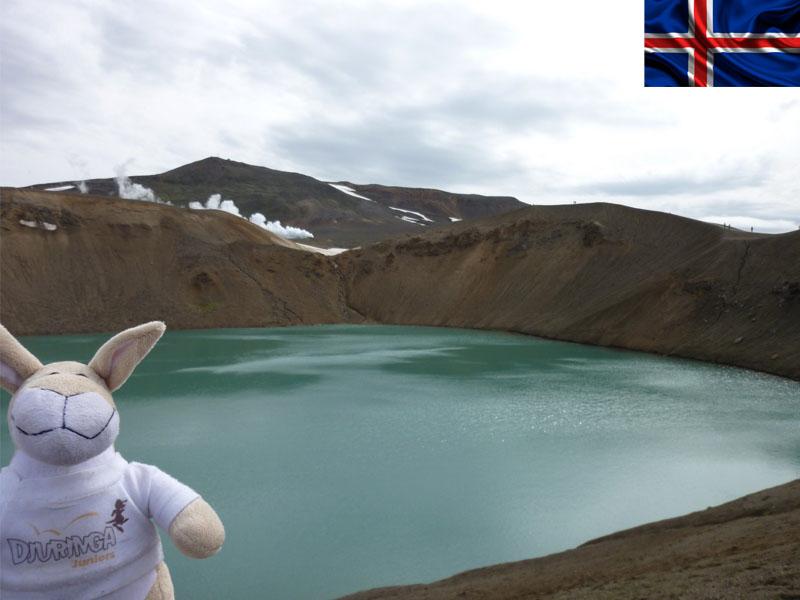 mascotte djuringa en colonie de vacances en Islande pour ados cet été