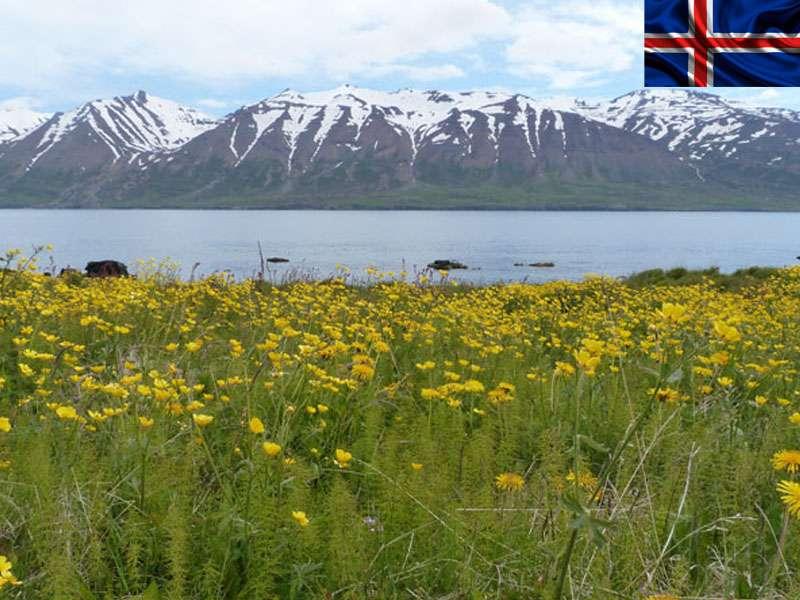 paysage de colonie de vacances Islande cet été
