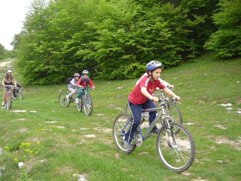 Enfant faisant la course à vélo en colonie de vacances d'été