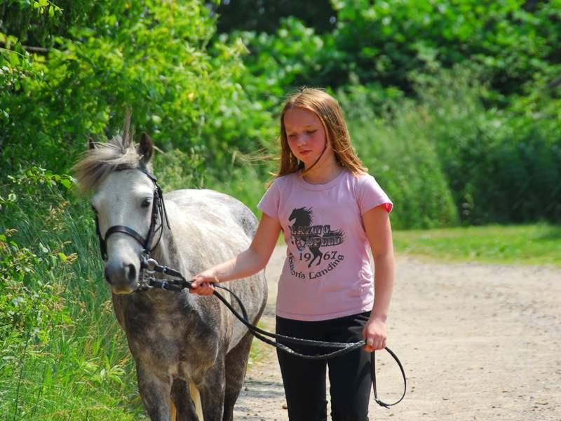 Jeune fille et un cheval en colonie de vacances équitation été