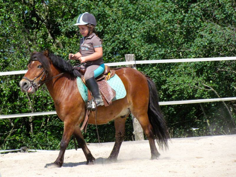 Fillette à dos de poney en colo équitation