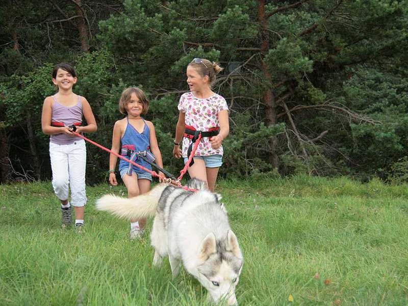 Trois jeunes filles en balade avec un chien de canirando en colonie de vacances