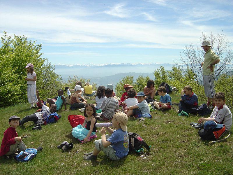 Groupe d'enfants assis dans l'herbe en pic nic en colonie de vacances été