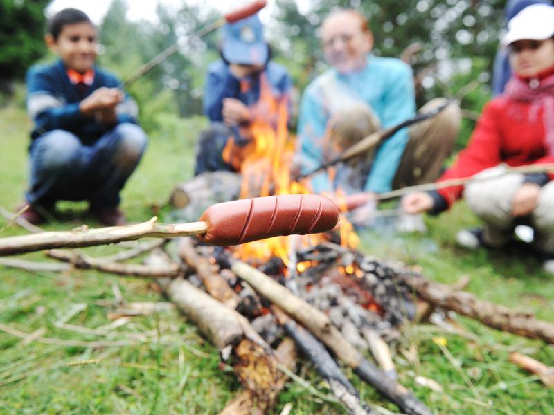 Enfants en colonie de vacances autour du feu de camp faisant cuire des saucisses et des chamallow été