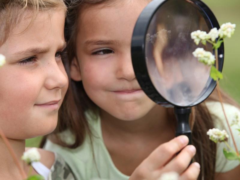 Deux jeunes filles observant une plante à l'aide d'une loupe en colonie de vacances été