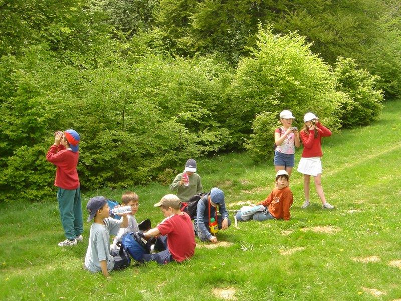 Groupe d'enfants faisant un pic nic en colonie de vacances à la campagne