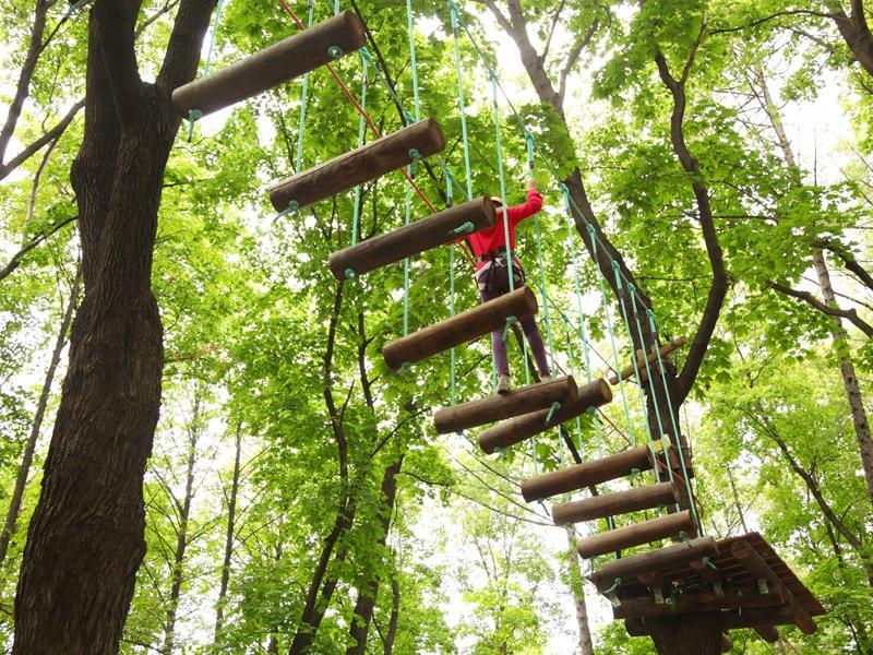 Enfant sur un pont de singe en colonie de vacances accrobranche été