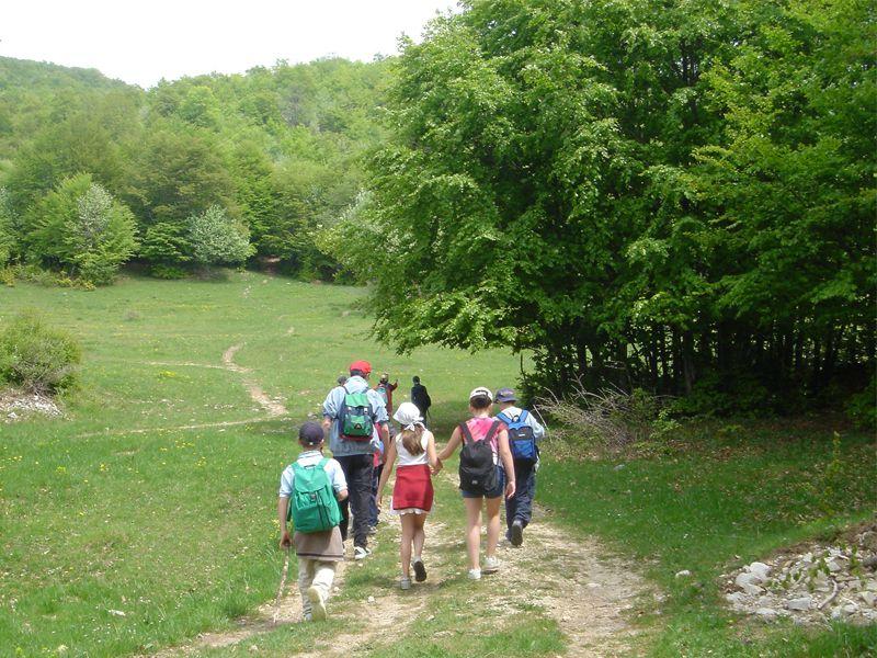 Groupe d'enfants en balade à la campagne en colonie de vacances été