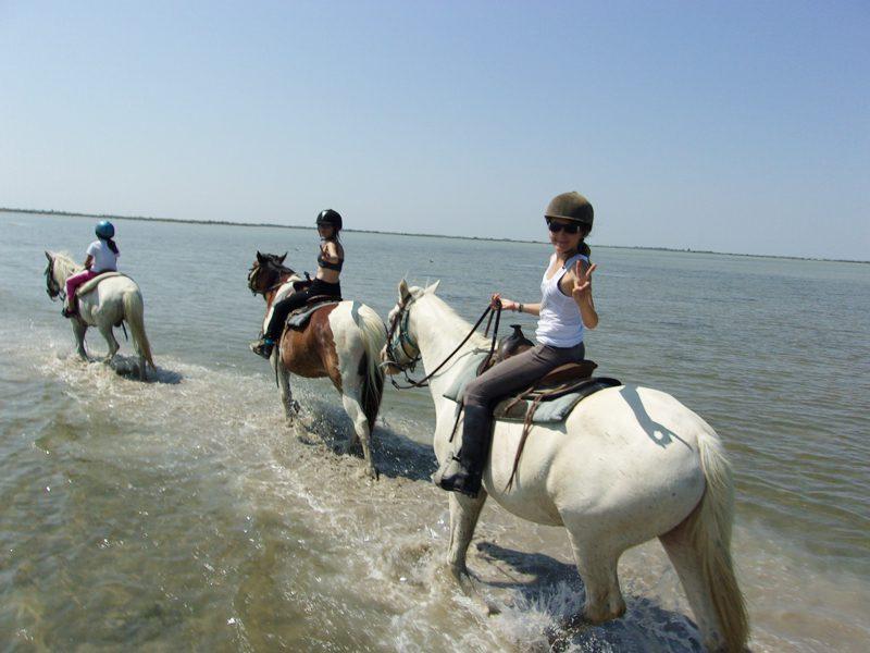 Enfants en balade à cheval en bord de mer en colo équitation