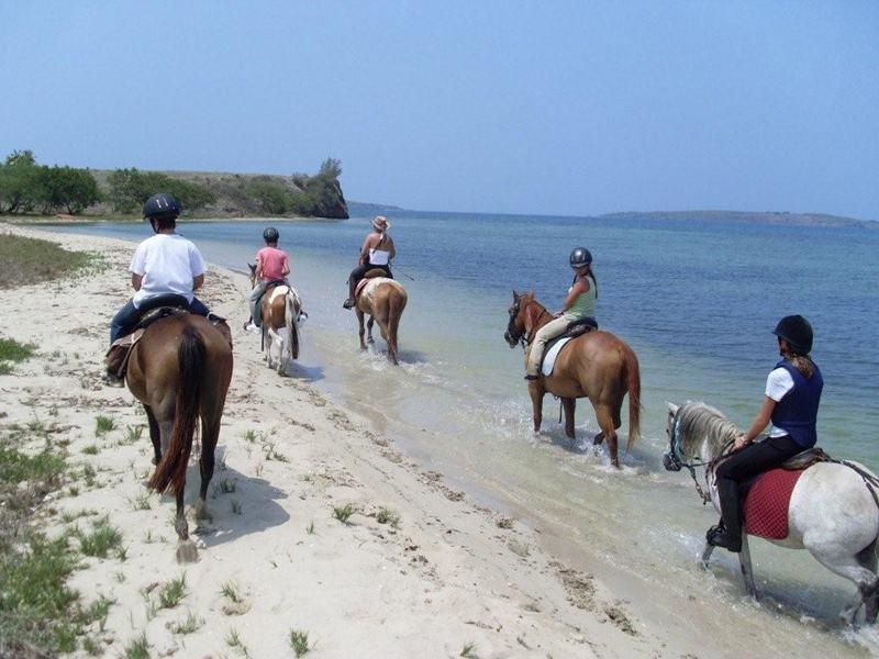 Enfants et adolescents à cheval au bord de l'eau en colonie de vacances d'été