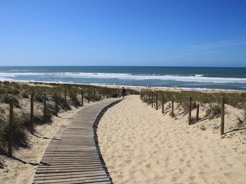 Vue sur la plage de colonie de vacances surf
