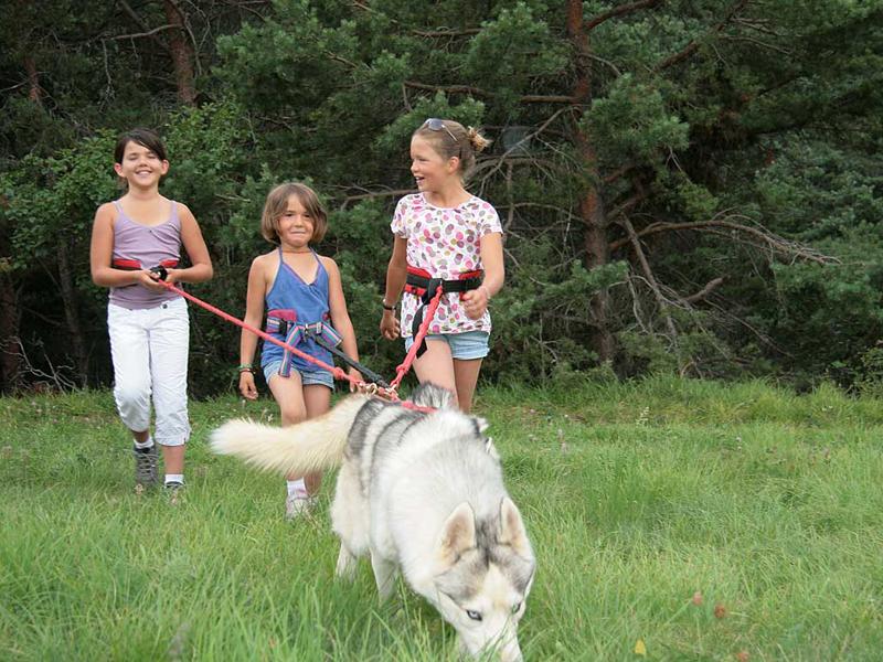 Trois jeunes filles en balade avec un chien en canirando en colonie de vacances