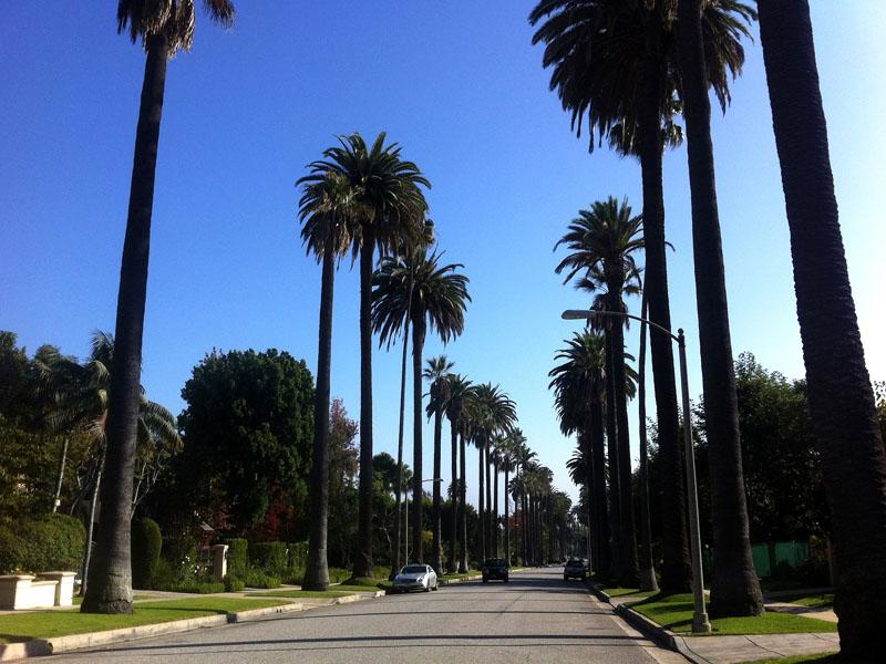Vue sur palm spring cet été en colonie de vacances pour ados