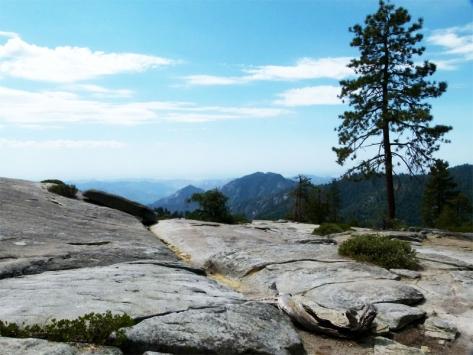 Colonie de vacances à Sequoia Park pour ados