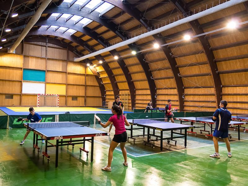 Enfants jouant au tennis de table en stage sportif cet été