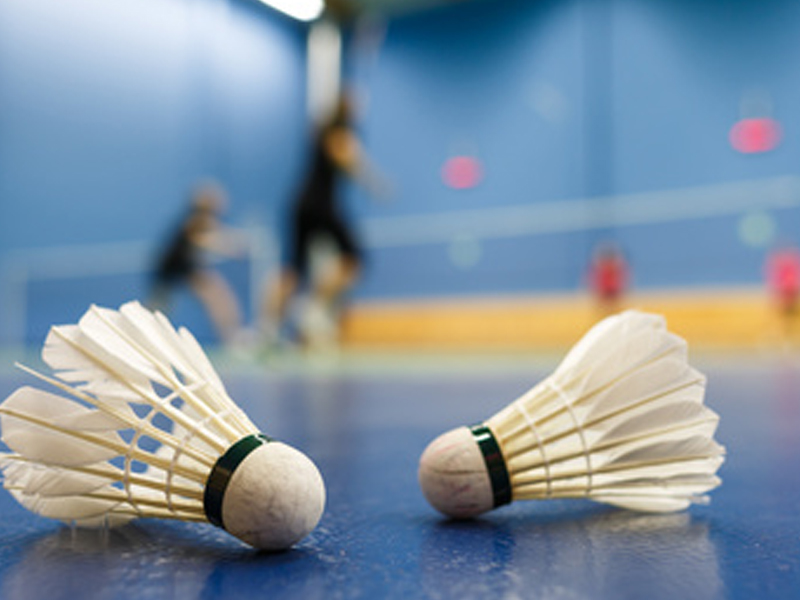 deux volants de colonie de vacances stage sportif badminton