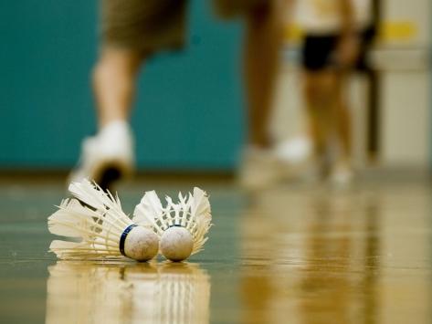 Stage sportif de badminton en Auvergne