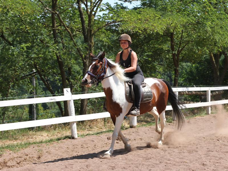 adolescente faisant du cheval en stage d'équitation cet été