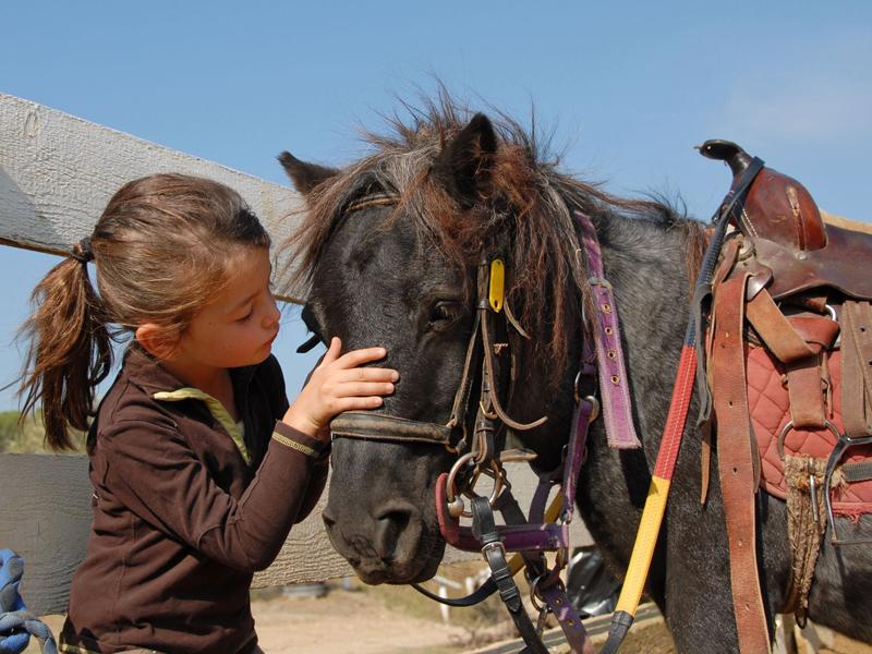 Portrait d'une fillette et un cheval en stage sportif d'équitation cet été