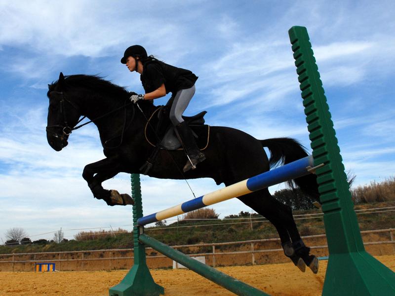 Adolescente pratiquant le saut de haie à cheval en stage équitation