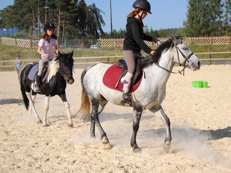adolescents s'entrainant à l'équitation en stage sportif d'équitation