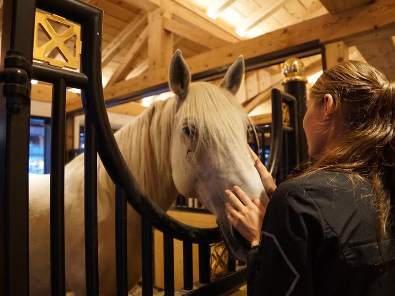 adolescente prenant soin de son cheval en stage sportif