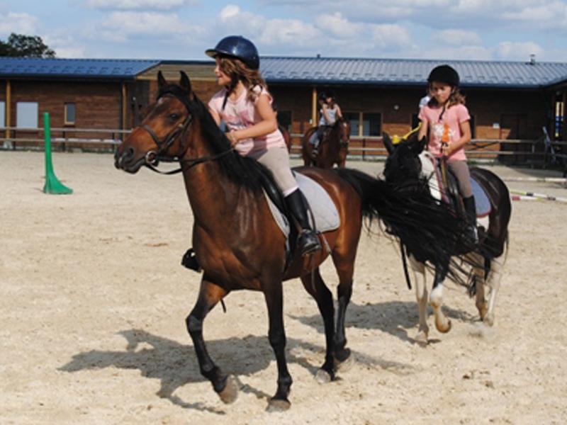 enfants faisant de l'équitation durant un stage sportif
