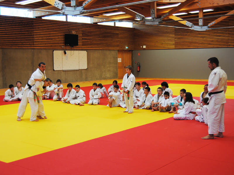 groupe d'enfants faisant du judo en stage sportif