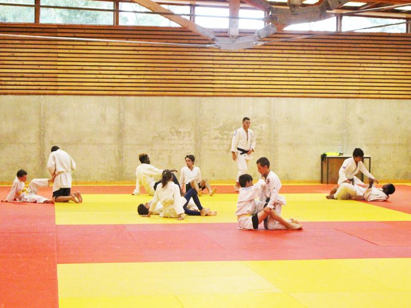 Adolescents et enfants pratiquant le judo en stage sportif cet été