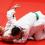 Stage sportif judo