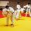 Stage de sport judo été