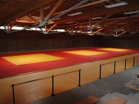 Stage de judo gymnase