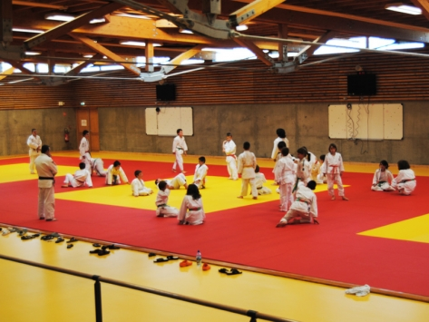 Stage judo