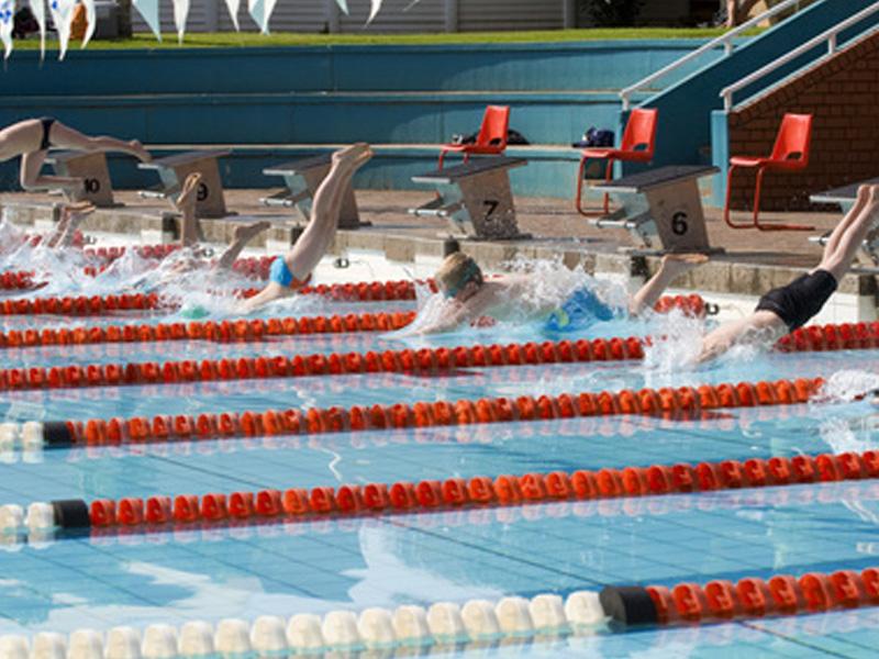 piscine de natation professionnelle pour stages sportifs de natation pour enfants et ados