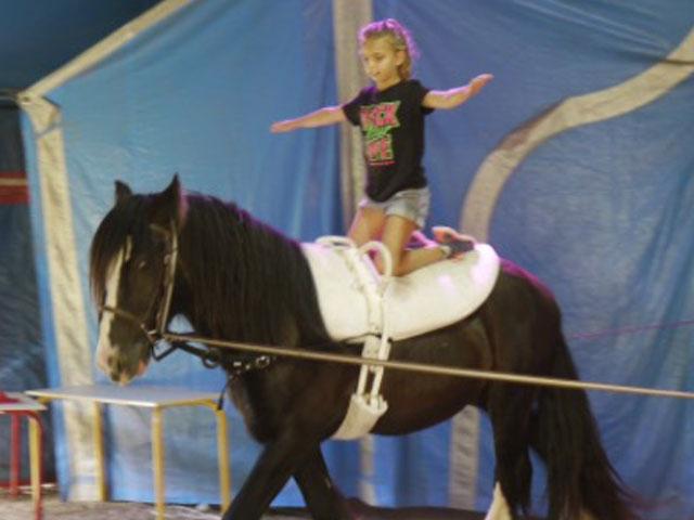Enfant en équilibre sur un cheval pendant sa colo cheval