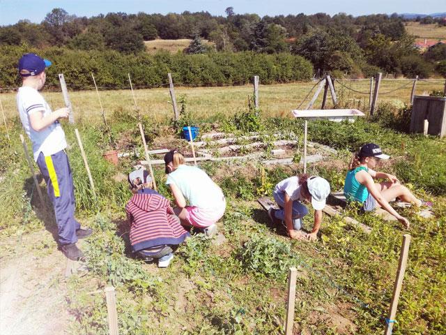 Des enfants qui jardinent en colonie de vacances