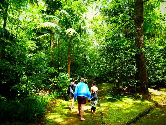 Adolescents en balade en forêt en colonie de vacances aux Açores