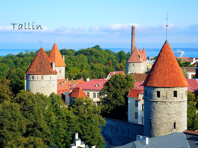 Chateau de tallin visité en colonie de vacances par des ados