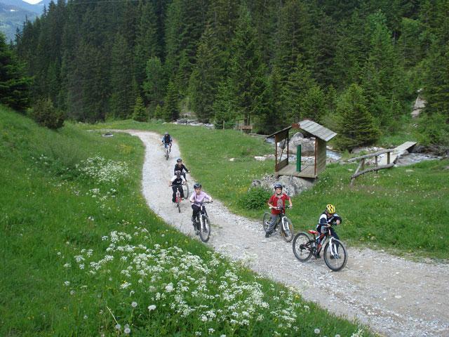 Enfants faisant du vélo à la montagne l'été en colonie de vacances