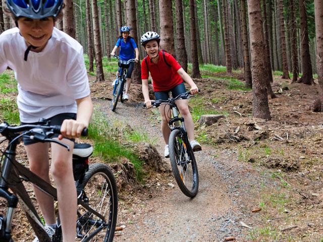 Randonnée en vélo dans les bois en colonie de vacances