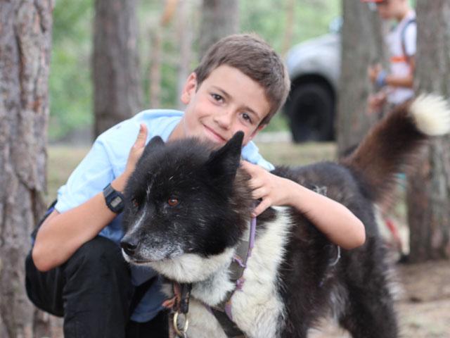 Jeune garçon caressant un chien en colonie de vacances