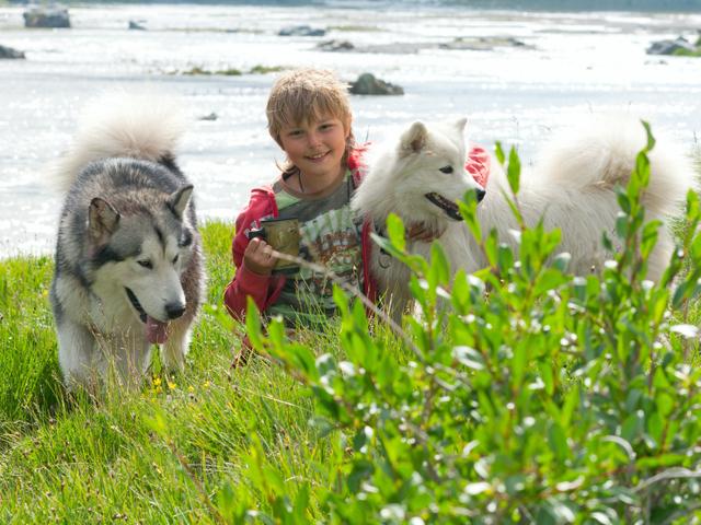 Jeune garçon avec deux husky en canirando en colonie de vacances
