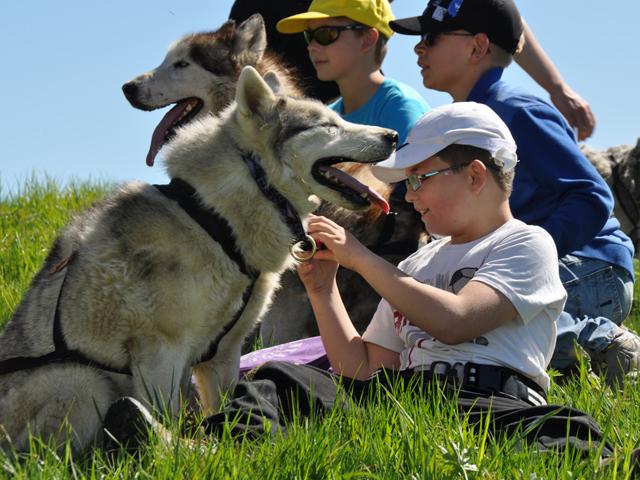 Groupe d'enfants et leur chien de canirando en colonie de vacances